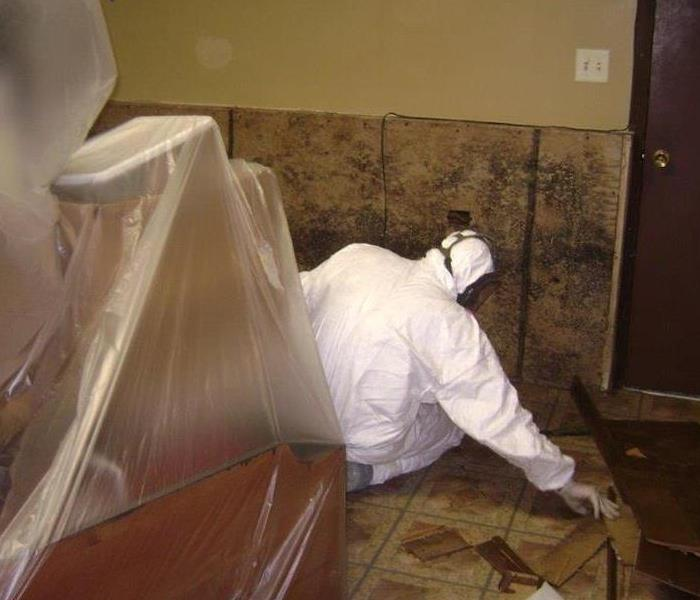 Safe Mold Removal From This Ottawa, IL Home After