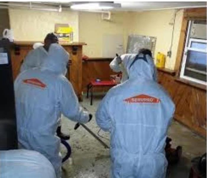 Biohazard Cleanup in Frankfort, IL