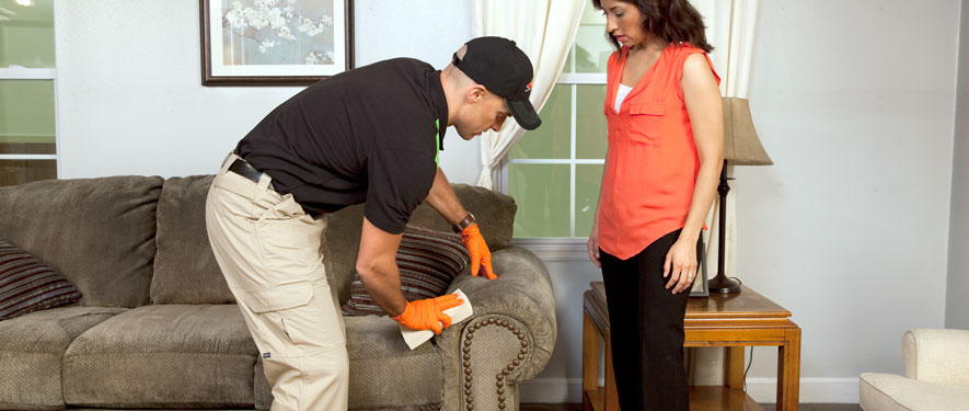 Frankfort, IL carpet upholstery cleaning