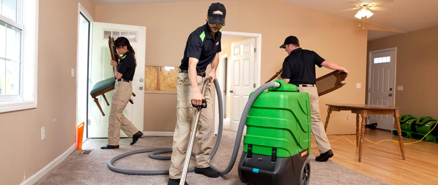 Frankfort, IL cleaning services