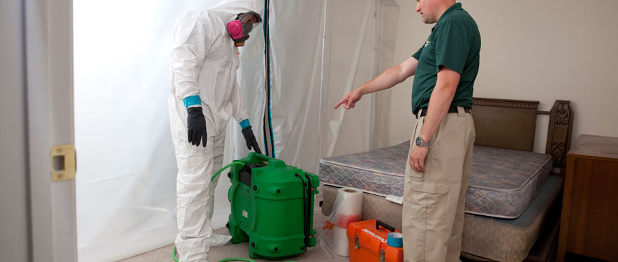 Frankfort, IL mold removal process